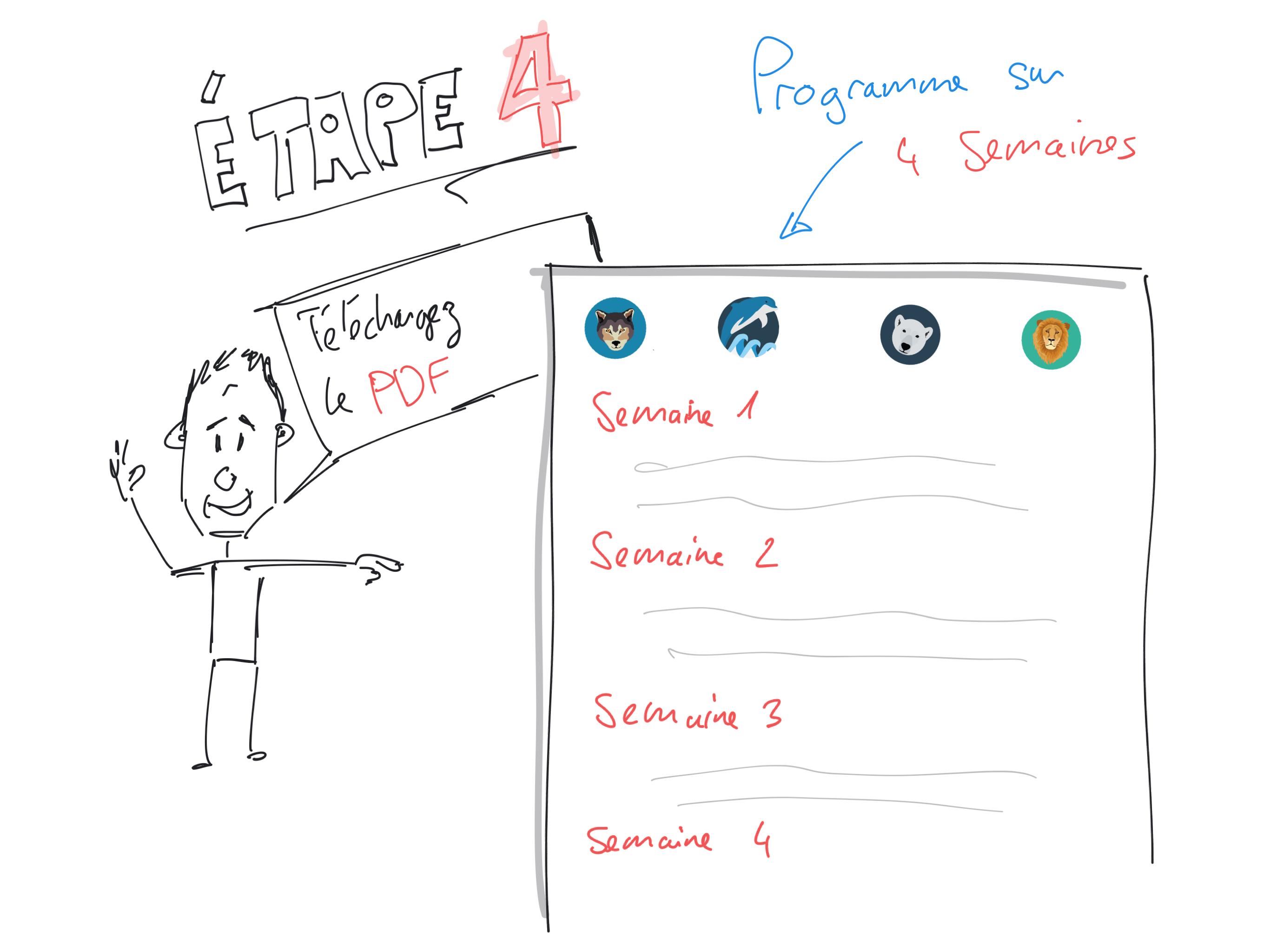 Programme PDF cycle circadien