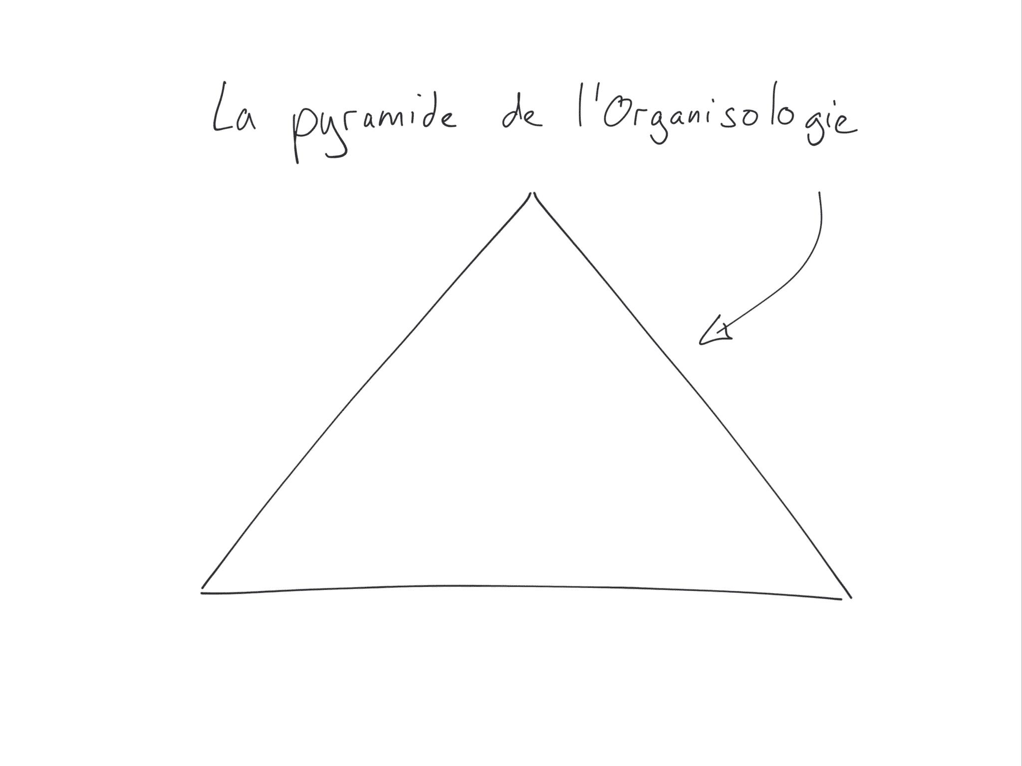 La pyramide de l'organisologie